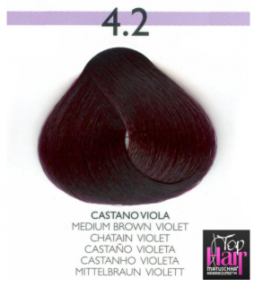 Puring Tutto colors 4.2 CASTANO VIOLA 100ml